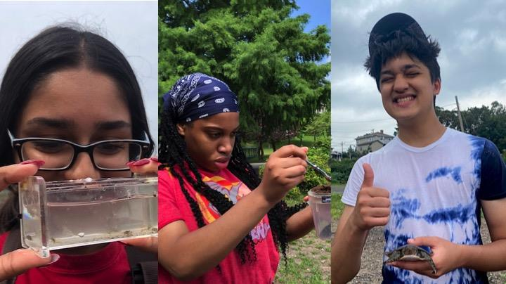 Today's bloggers are (LtoR) Shania Ninan, Sarah-Gail Harvey and Talha Uddin. Here they are exploring environmental science on the banks of the Hudson River this summer.