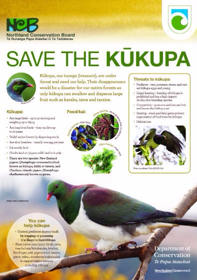 Save the Kukupa Poster - Northland Conservation Board