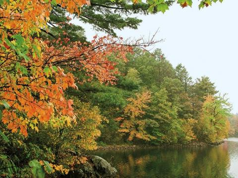 Autumny lake photo, with leaves changing colors on the trees on the shore