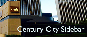 Century City Mixer