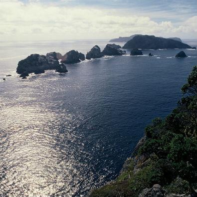 Three Kings Islands. Photo: Andrea Booth.