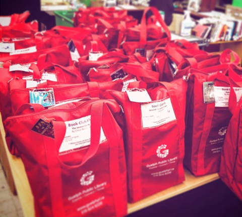 This is a photograph of the library's book club kits. Ten books plus a discussion guide are available with each book club kit bag.