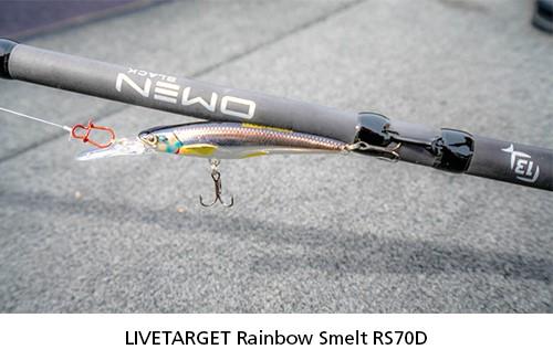 LIVETARGET Rainbow Smelt Jerkbait
