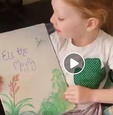 Eli the Mayfly video