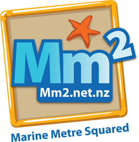 Marine Metre Squared