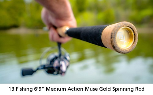 Muse Gold spinning rod