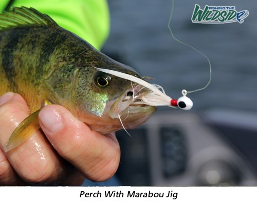 Perch with Marabou Jig