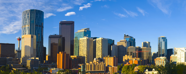 How can Calgary Chamber policy workshops benefit your business?