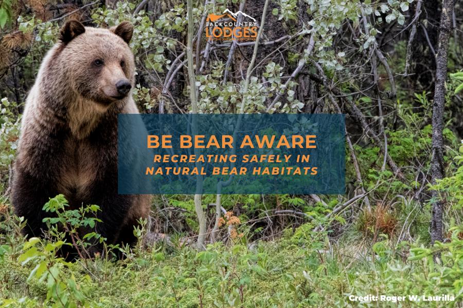 BE BEAR AWARE: Recreating Safely in Natural Bear Habitats