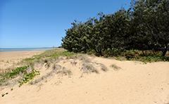 Beach foreshores