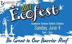 Ecofest poster