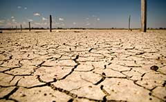 Drought affected area