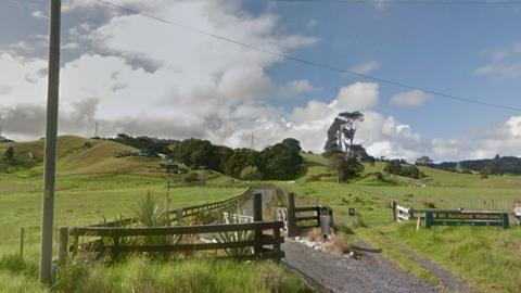 Commission supports rahui to save kauri