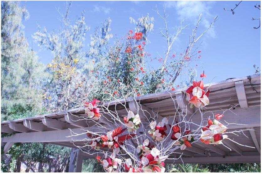 https://www.artsy.net/artwork/kelly-han-wedding-flowers
