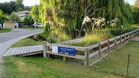 Bullock Creek Walkway, Wanaka