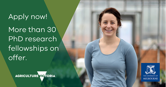 apply now more than 30 phd research fellowships on offer
