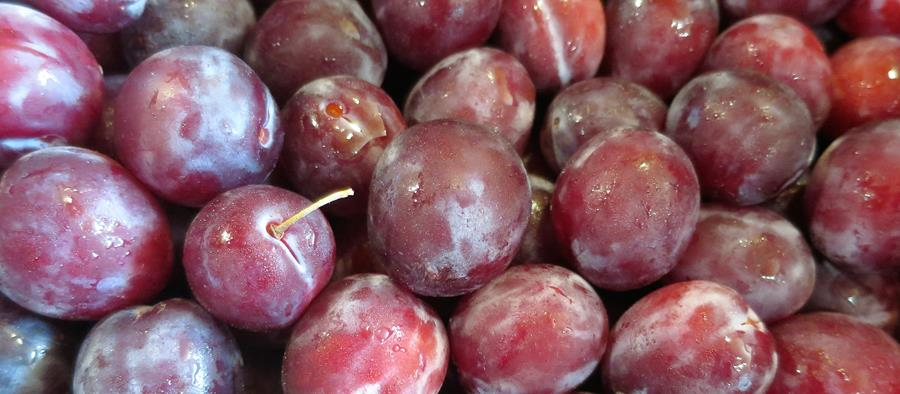 Bury Lane Farm Shop FB Cover Plums August 2018