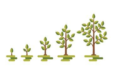 groeibedrijven