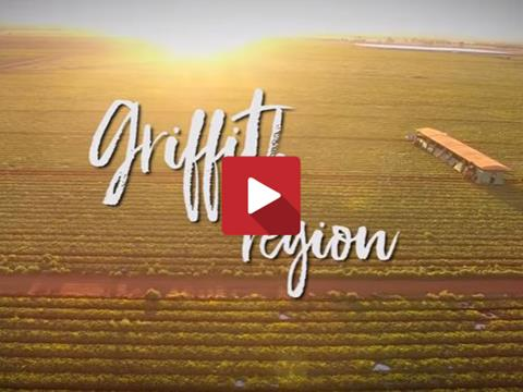 Aerial image of crops in the Griffith region.
