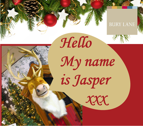 Bury Lane Farm Shop Christmas Shop Name the Talking Reindeer
