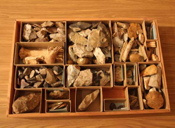 Image of a drawer before cataloging