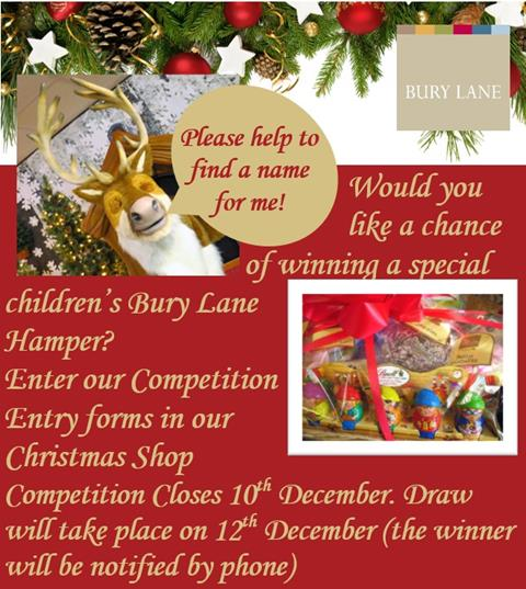 Bury Lane Farm Shop Christmas Shop Name the Talking Reindeer