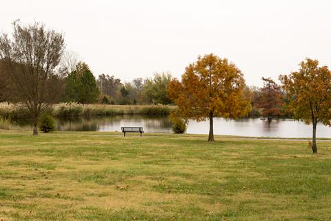 Fall foliage around the walking trails and pond.