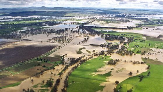 Namoi in flood