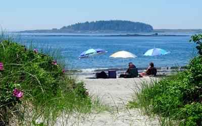 Beach Fans