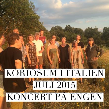 Korrejse med Koriosum juli 2015