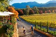 Boynton's Feathertop Winery, near Bright, Victoria