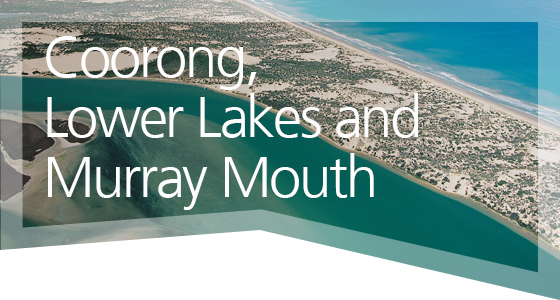 Coorong, Lower Lakes and Murray Mouth