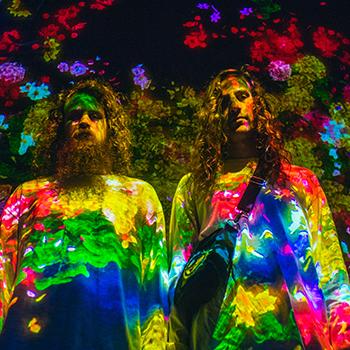 Hippie Sabotage image