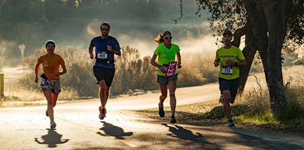 Picture of runners on the parkway