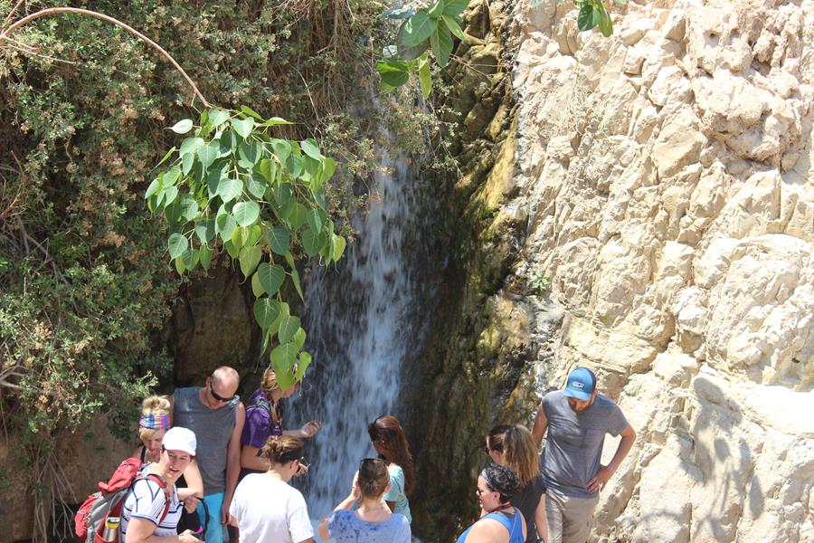 Ein Gedi Explore Israel Travel with Purpose Maranatha Tours