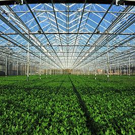 land- en tuinbouw