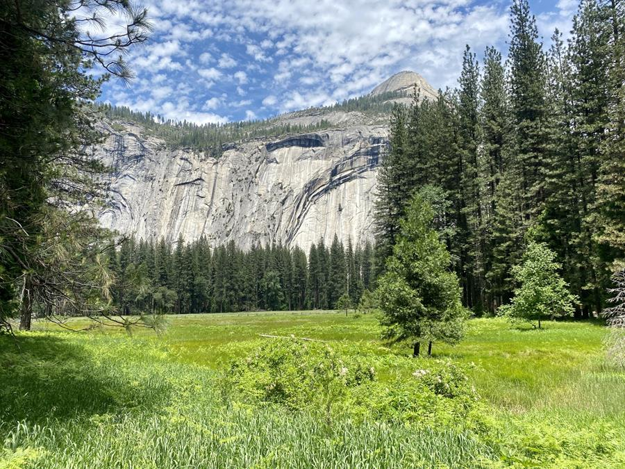 Beauty shot taken in Yosemite Valley in May 2020, looking across a bright green meadow lined with conifers toward granite mountains (North Dome and Royal Arches).