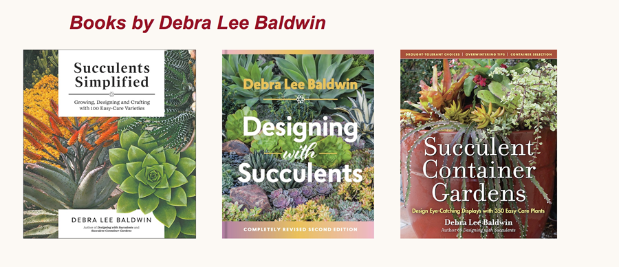 Books by Debra Lee Baldwin